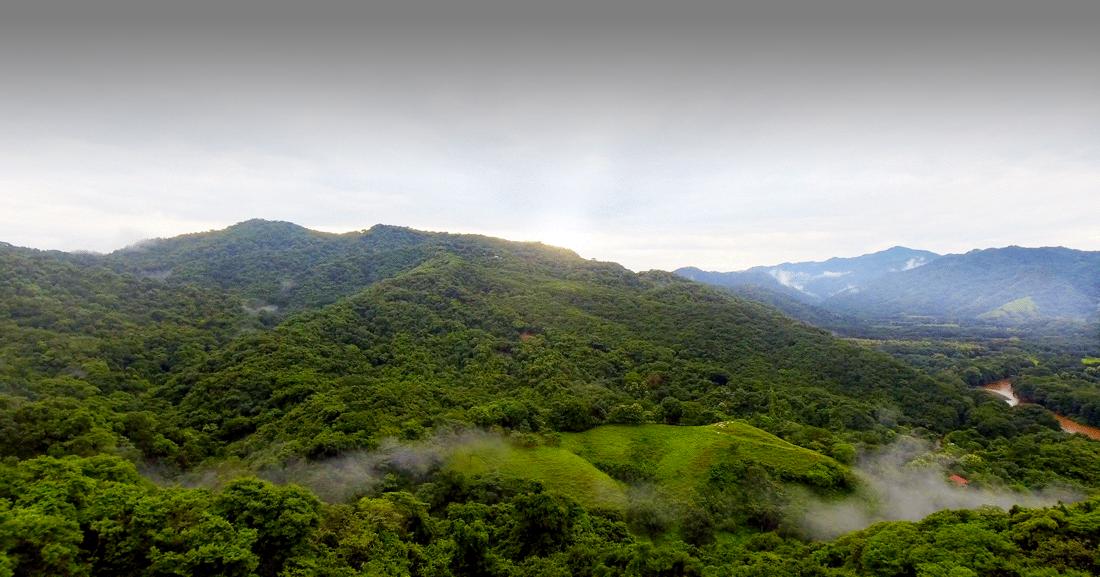 K-Raes | Nosara, Costa Rica